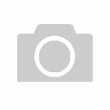 Coleman Chair Rambler Red image